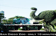 San Diego Zoo at California